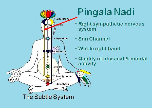 Our Three Energy Channels Sahaja Yoga Meditation